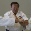 Course with Sensei Safar in Elsterwerda